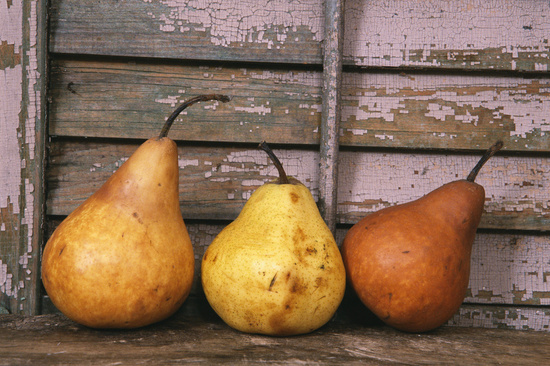 pears-calories